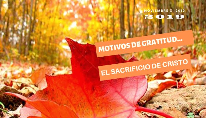 MOTIVOS DE GRATITUD